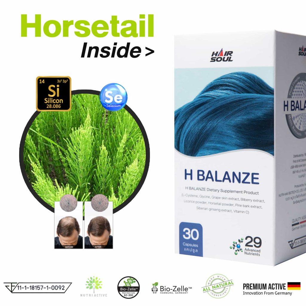 วิตามิน Horsetail วิตามินหญ้าหางม้า Inside
